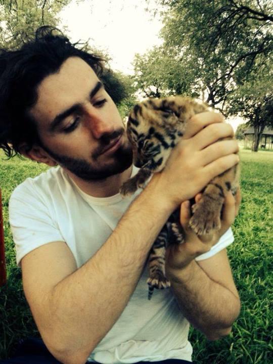 Bu gördüğünüz yavru bengal kaplanı ama o da aynı aslanların beslendiği aslan maması tozu ile yapılan sütle besleniyor.
