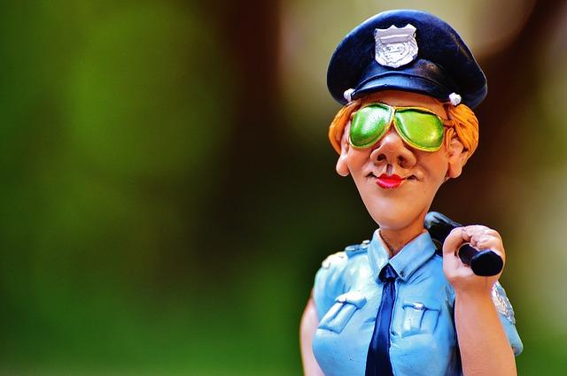 polis_otorite